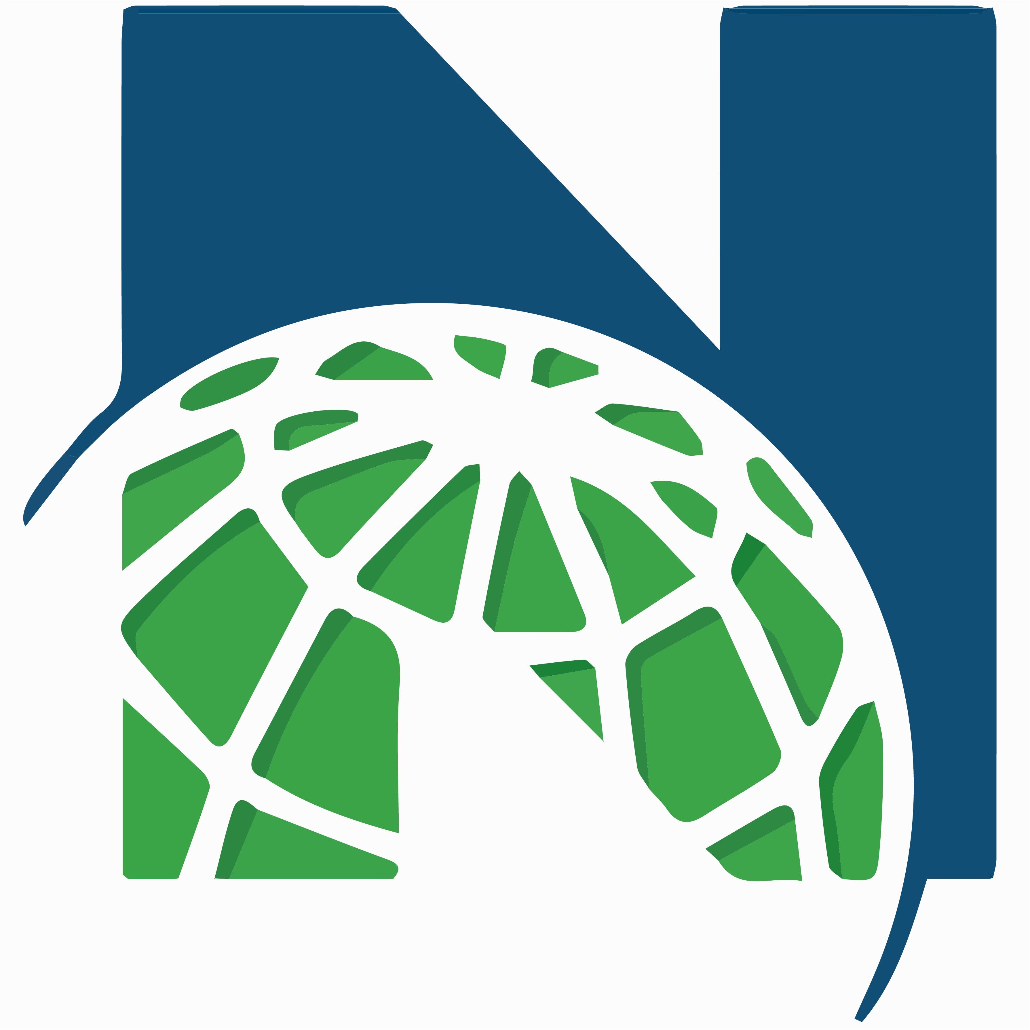Newcomer Logo New